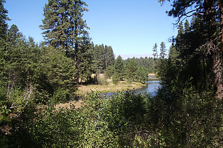 View from the Head of the Metolius River